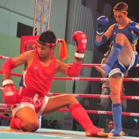 The respect of Wai Khru