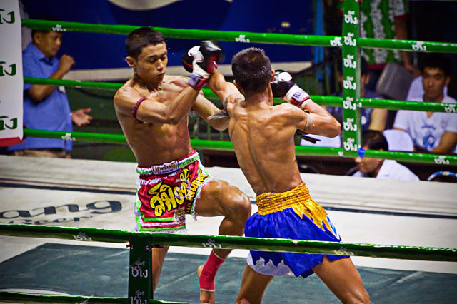 Muay Thai - Punch block