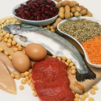 variety-of-protein-sources